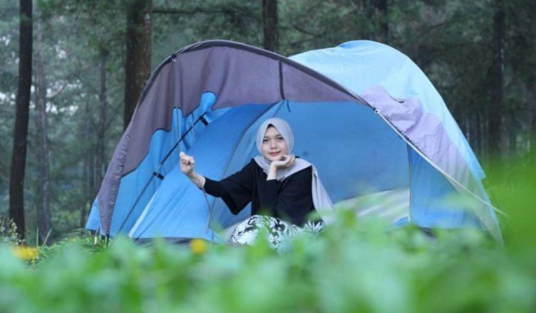 Hutan Pinus Lampakuwus