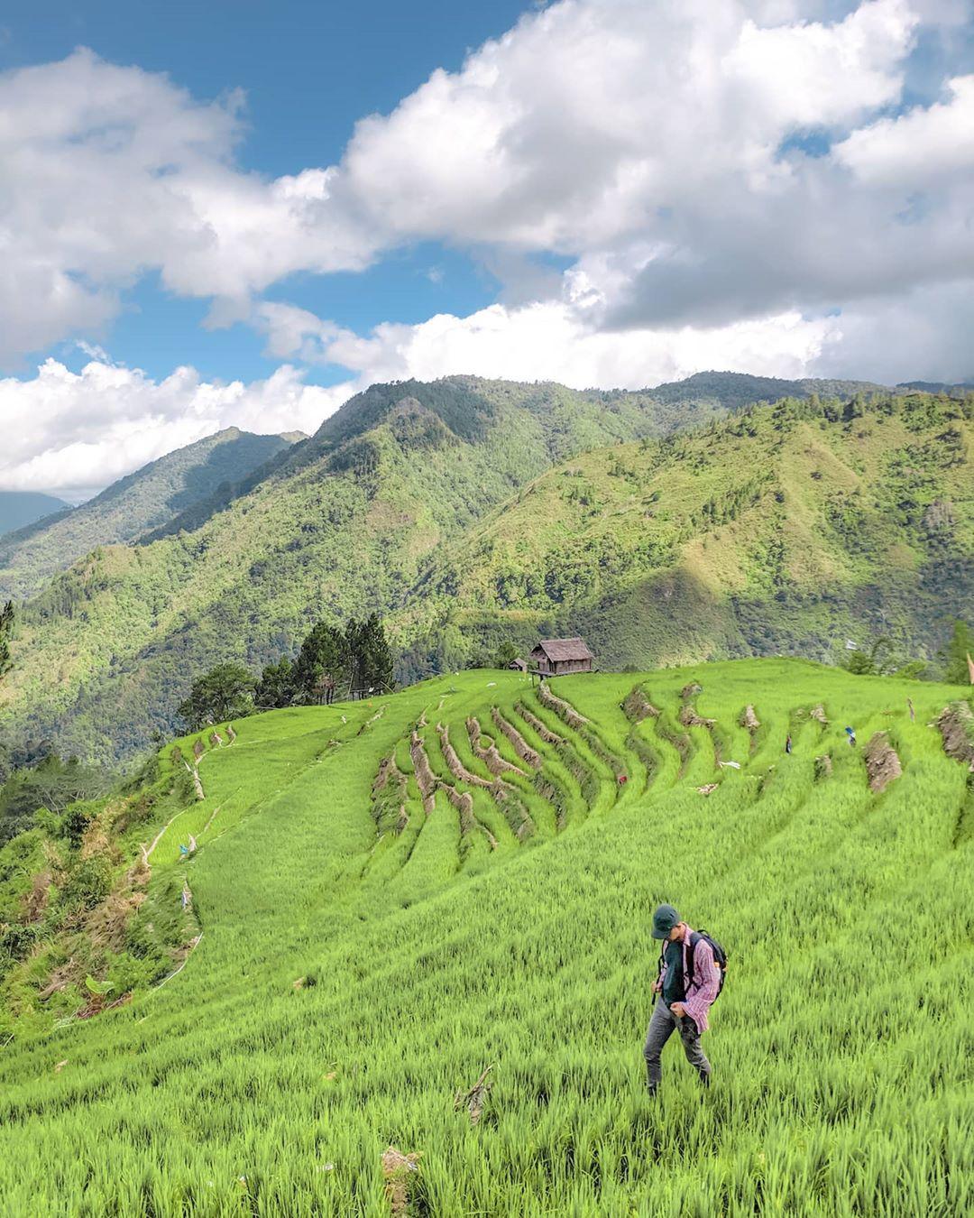 Terasering desa komba