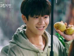 5 Fakta Chae Jong Hyeop, Si Mas Kentang di Nevertheless